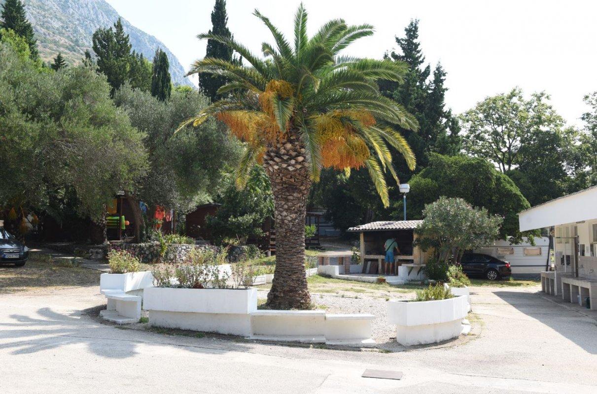 ZAOSTROG - Dalmacija