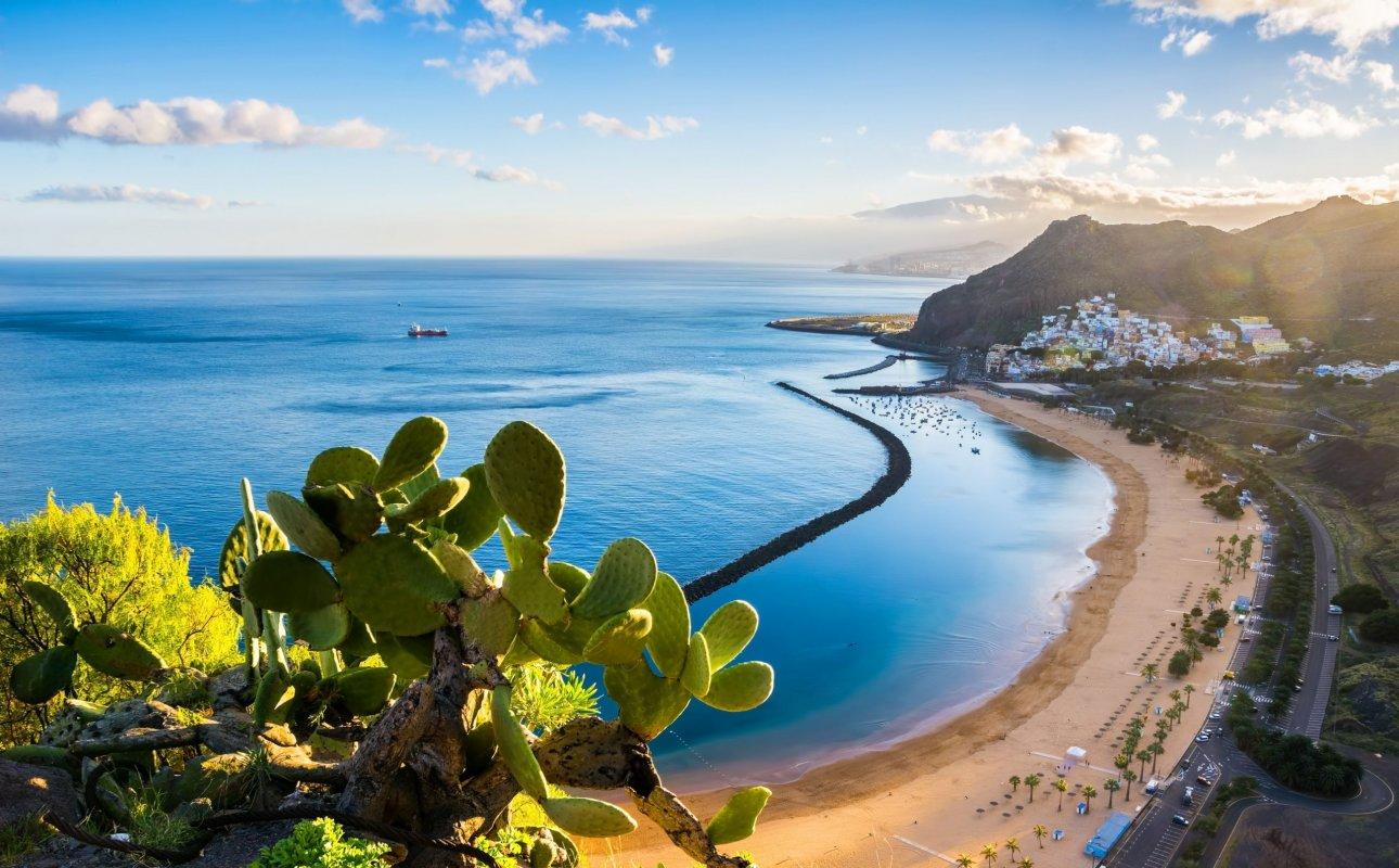APARTMAJI CARIBE***  - Playa de las Americas